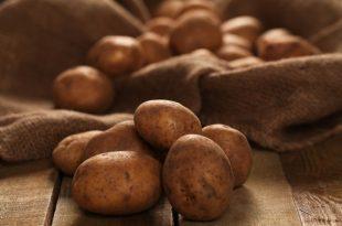 cocer patatas en olla express